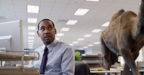 Hungry Man Productions » Geico – Hump Day